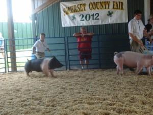 Fair 2012 060